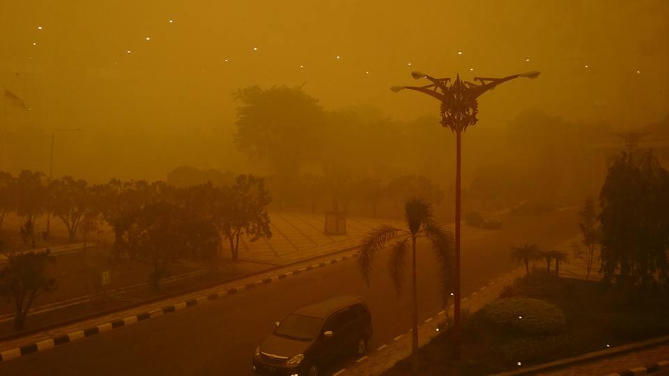 Permintaan Bantuan Kolektif untuk Korban Asap Pembakaran Hutan